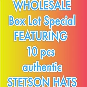 WHOLESALE BOX LOT original design samples STETSON